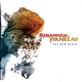 STRAPPING YOUNG LAD - The...