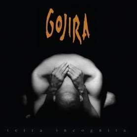 GOJIRA - 2LP - Tetra incognita