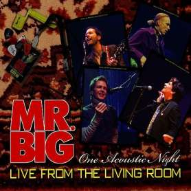 MR BIG - Live from the...