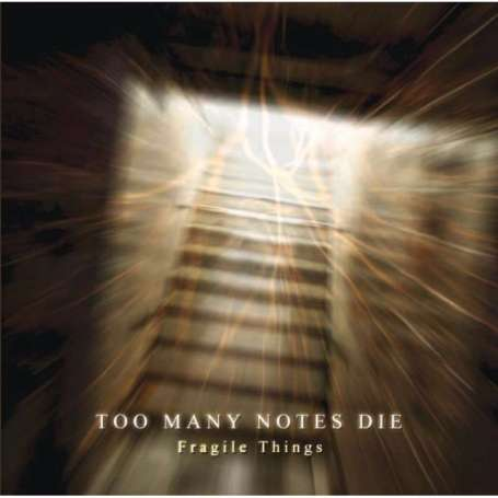 TOO MANY NOTES DIE - Fragile things - Cd