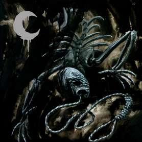 Leviathan - 2lp- A Silhouette In Splinters