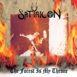 SATYRICON / ENSLAVED The forest /// Yggdrasill