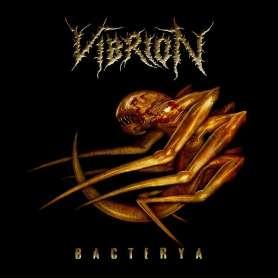 VIBRION - Bacterya