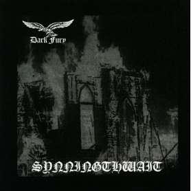DARK FURY - Synningthwait