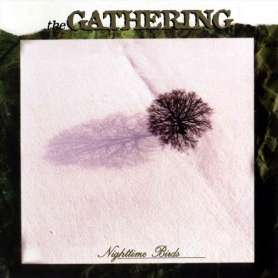 THE GATHERING - Nighttime...